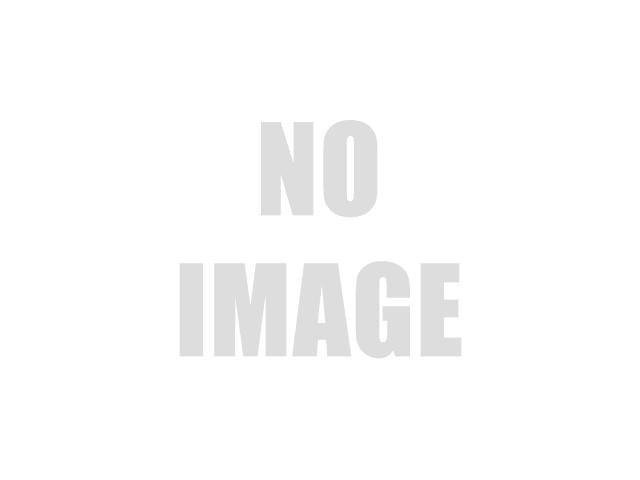 Ford EcoSport St Line 1.5 tdci 100 cv